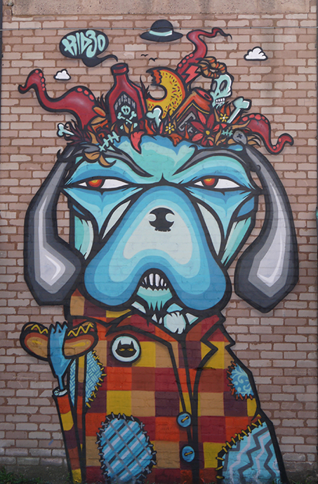 city of colours kid30